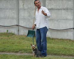 Le Moulin de Santeuil  - Sartrouville -  Education canine